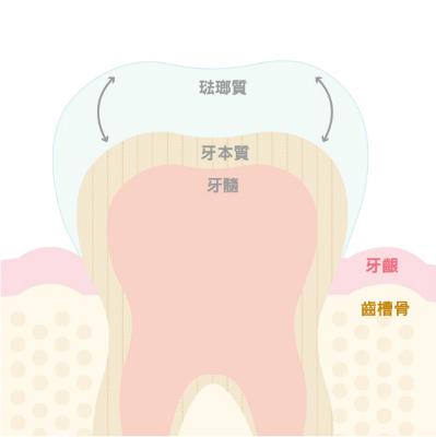 white-teeth-101-1-updated.jpg
